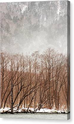 Willow Trees In Winter At Kamikochi Canvas Print