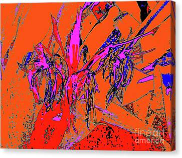 Wilted Spider Ws 24a Canvas Print by Nina Kaye