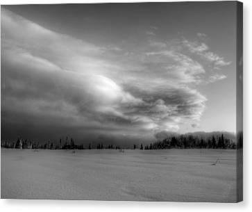 Windblown Cloud Canvas Print by Michele Cornelius