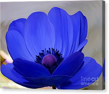 Windflower Canvas Print