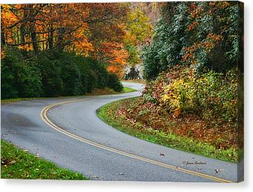 Canvas Print featuring the photograph Winding Road by Joan Bertucci