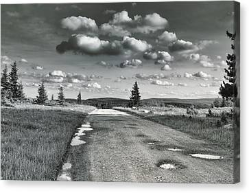 Canvas Print featuring the photograph Winding Road by Mary Almond