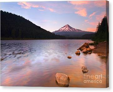 Forest Canvas Print - Windkissed Reflection by Mike  Dawson