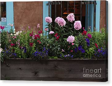 Canvas Print featuring the photograph Window-box Flowers  by Sherry Davis