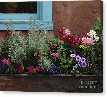 Canvas Print featuring the photograph Window-box II by Sherry Davis