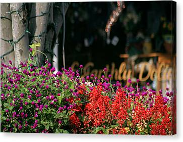 Canvas Print featuring the photograph Window Box by Lou Belcher