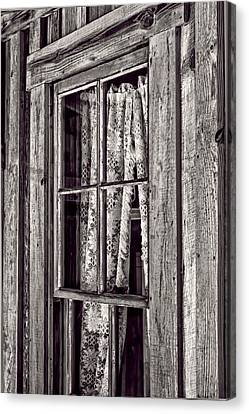 Window View Canvas Print by Nancie Rowan