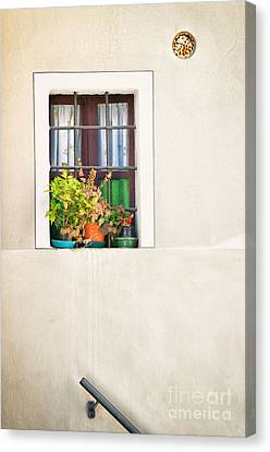 Window With White Frame And Vases Canvas Print by Silvia Ganora