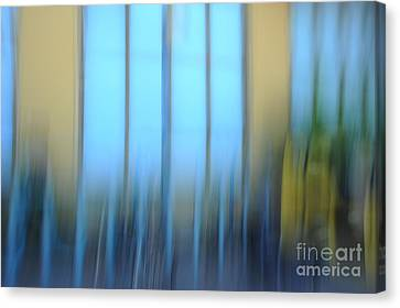 Windows And Walls Canvas Print by Catherine Lau