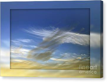 Windswept 2 Canvas Print by Kaye Menner