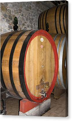 Wine Aging Canvas Print by Sally Weigand