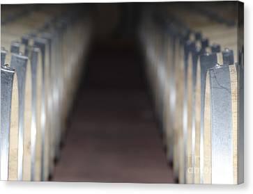 Wine Barrels In Line Canvas Print by Mats Silvan