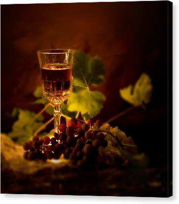 Wine Glass And Grapes Canvas Print by Ellie Caputo