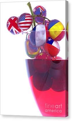 Wines From All Countries Canvas Print by Simon Bratt Photography LRPS