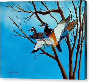 Canvas Print featuring the painting Wingin'  It by Fram Cama