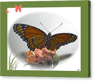 Wings Of Beauty Canvas Print by Debra     Vatalaro