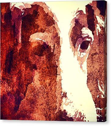 Winston  Canvas Print by Christine Segalas