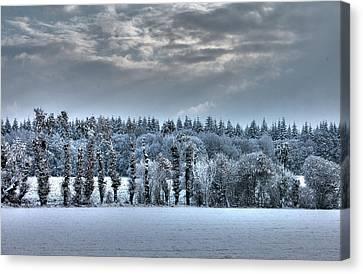 Winter At France Canvas Print by Dominique Guillaume est un Auteur-Photographe