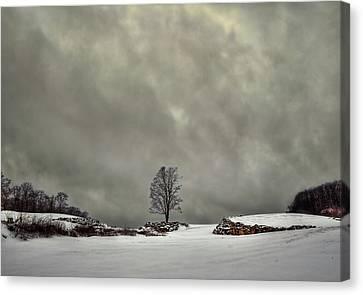 Winter Blues Canvas Print by Evelina Kremsdorf
