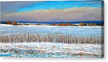 Winter Fields With Snow Fence Canvas Print by Bob Richey