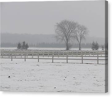 Canvas Print featuring the mixed media Winter Fog On The Paddocks by Bruce Ritchie