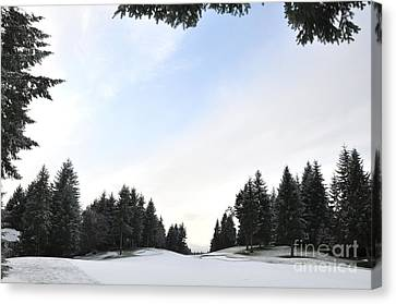 Winter Golf Course  4 Canvas Print by Tanya  Searcy