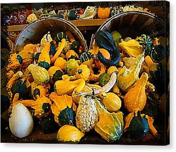 Winter Gourds  Canvas Print by Nick Kloepping