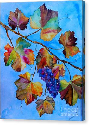 Winter Grapes Canvas Print by Fred Meehan