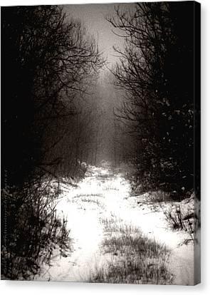 Winter IIi Canvas Print by Mimulux patricia no No