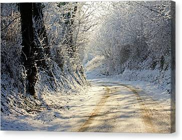 Winter In Small Countryside Road Canvas Print by © Frédéric Collin
