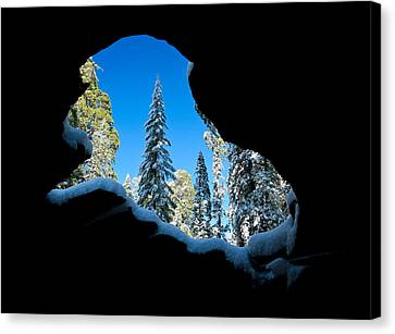 Winter Inside Out Canvas Print