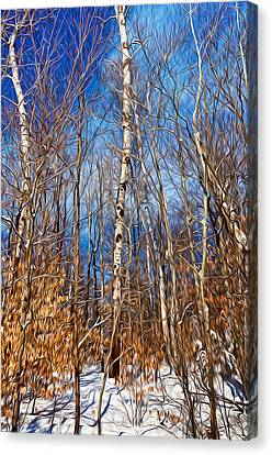 Winter Landscape I Canvas Print by Celso Bressan