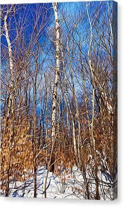 Winter Landscape I Canvas Print