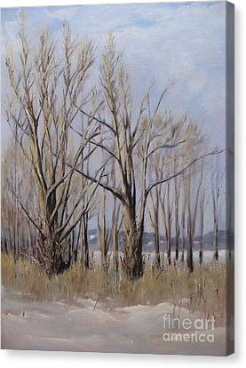 Winter Maples Canvas Print by Ronald Tseng