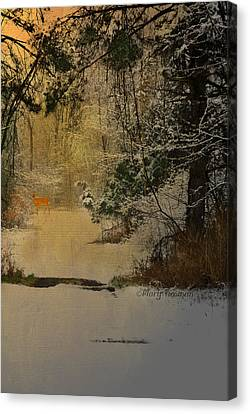 Canvas Print featuring the photograph Winter Path by Mary Timman