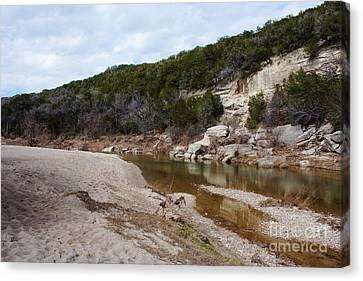 Winter River Canvas Print by Lisa Holmgreen
