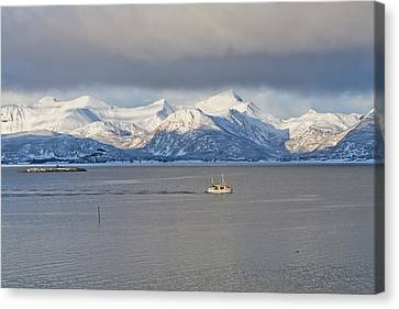 Winter Sea Canvas Print by Frank Olsen