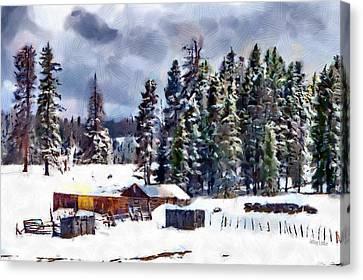 Conifer Canvas Print - Winter Seclusion by Jeffrey Kolker