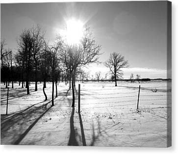 Winter Shadows Canvas Print by Leanna Lomanski
