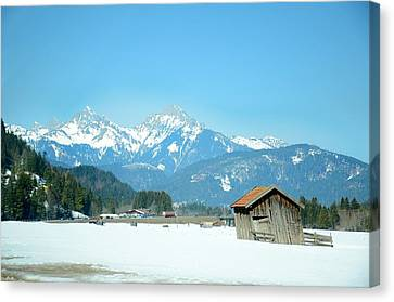 Winter Shed Canvas Print