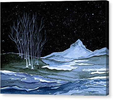 Winter Solstice Canvas Print by Brenda Owen