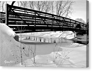 Canvas Print featuring the photograph Winter Splendor In B And W by Janice Adomeit