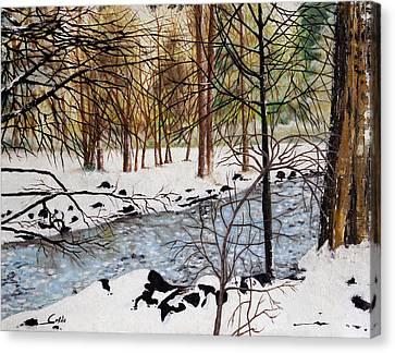 Winter Spring Canvas Print by Seth Corda