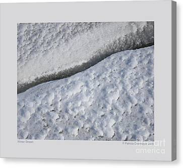 Winter Stream Canvas Print by Patricia Overmoyer