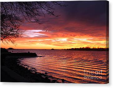Winter Sunset Canvas Print by Butch Lombardi