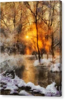 Winter Sunset Canvas Print by Elizabeth Coats