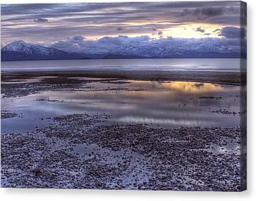 Winter Sunset Canvas Print by Michele Cornelius