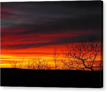 Winter Sunset Canvas Print by Rebecca Cearley