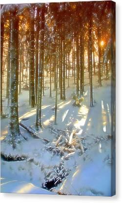 Winter Sunset Canvas Print by Rod Jones