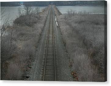 Winter Tracks  Canvas Print by Neal Eslinger